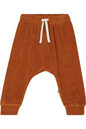 Molo Sigo velvet sweatpants