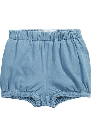 Boden Infant Girl's Cotton Chambray Bloomers