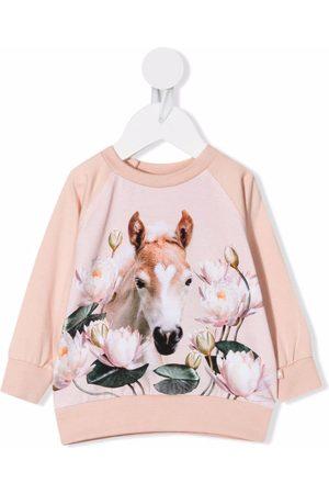 Molo Hoodies - Water lily foal-print sweatshirt
