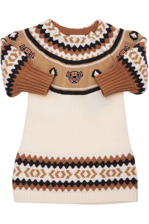 BURBERRY Intarsia Wool Blend Knit Dress