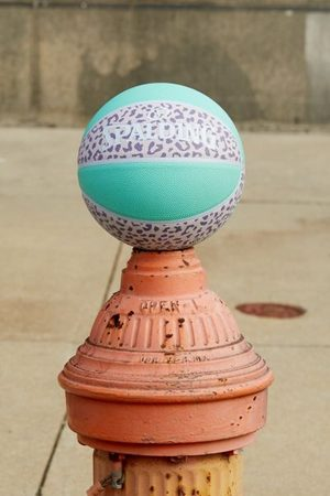 Spalding UO Exclusive Colorblock Leopard Basketball