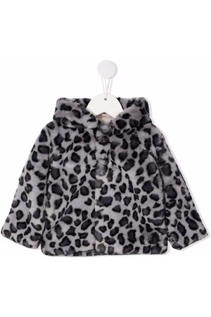 Molo Leopard print hooded jacket - Grey
