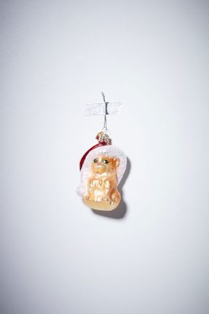 Urban Outfitters Hats - Santa Hat Cat Christmas Ornament