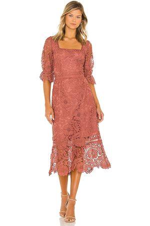 Steve Madden Women Midi Dresses - Did It My Way Dress in Mauve.