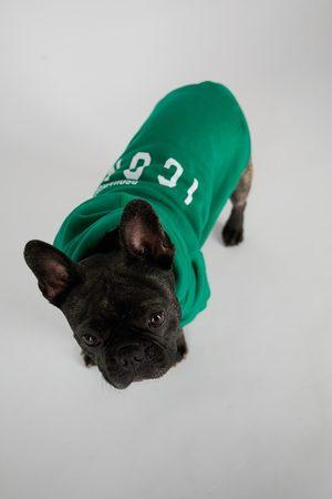 Dsquared2 Accessories - Unisex Dogwear